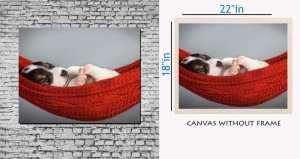 meSleep Canvas painting without frame - Cute Puppy Sleeping Art  pc-11-067