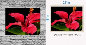 meSleep Canvas painting without frame - Flower Art pc-11-070