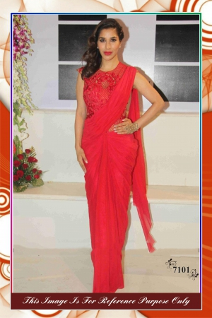 Bollywood Replica Saree Of Sophie  7101