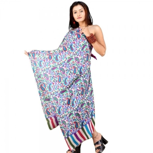 Reversible Pure Kashmiri Style Designer And Colourful Scarf Stole  DLI4SHW106