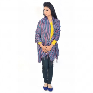Traditional Stripe Pattern Multicolor Silk Reversible Kashmiri Stole DLI4SHWF165