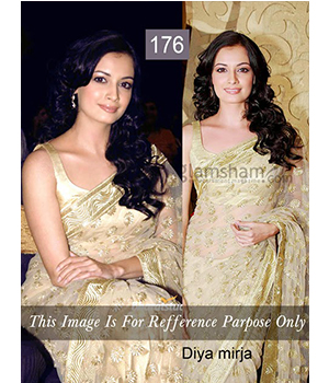 Bollywood Replica Saree Of Diya Mirza 176