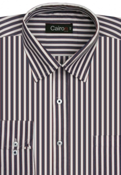 Cairon Blue Stripe Executive Formal Shirt Sf-B4340_A