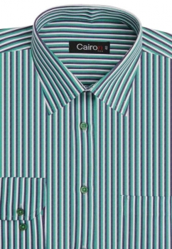 Cairon Green Satin Stripe Executive Formal Shirt Sf-B4404_C