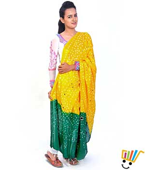 Little India Women Dupatta DLI4DPT102