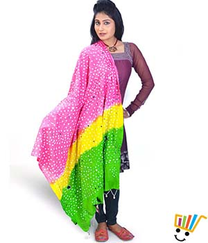 Little India Women Dupatta DLI4DPT109
