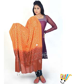 Little India Women Dupatta DLI4DPT110