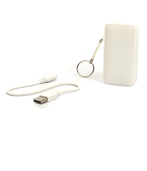 High Efficient Rapid Charge USB Portable Power Bank For Smartphones DLI4PB1178