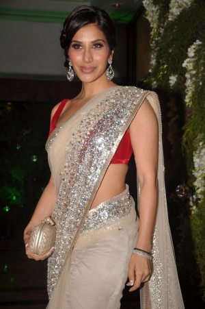 Sophie Choudhary Festival Special Exclusive Cream Net Bollywood Saree DLI4SRR549