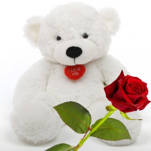 Beautiful Red Rose and Cute Adorable Teddy Bear Valentine Flower Gift DLV5FLW605
