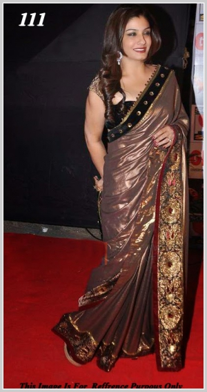 Raveena Tandon Brown Saree At Sab Ke Satrangi Parivaar Awards VF-111