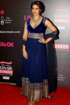 Bipasha Basu Blue Anarkali At Life Ok Screen Awards 2014 BWA033