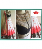 White Beauty Net Dupatta Net Lehenga Velvet Blouse ET-9507