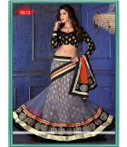 Indian Designer Beautiful Party Wear Net Dupatta Net Lehenga ET-9513