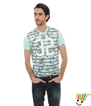 Basics Casual 100% Cotton T.Shirts 14BTS31024