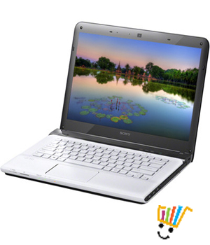 Sony VAIO E14133 Laptop (3rd Gen Ci3/ 2GB/ 500GB/ Win8) (White)