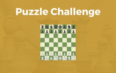 Puzzle Challenge #89