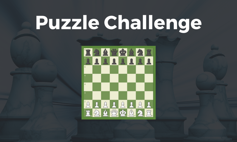 Puzzle Challenge #91