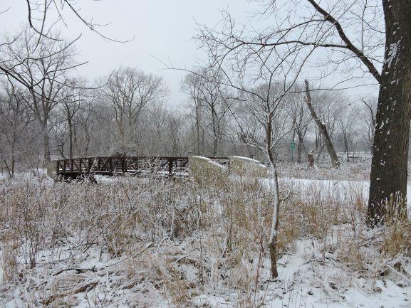 https://s3.amazonaws.com/chicago-river/montage/images/photos/3017/original/Landscape_3_web.JPG?1609784036