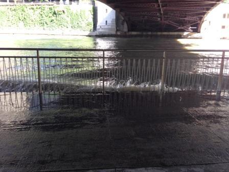 Wabash_flooding_7-1-14_-_web