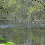 Pretty_river_2