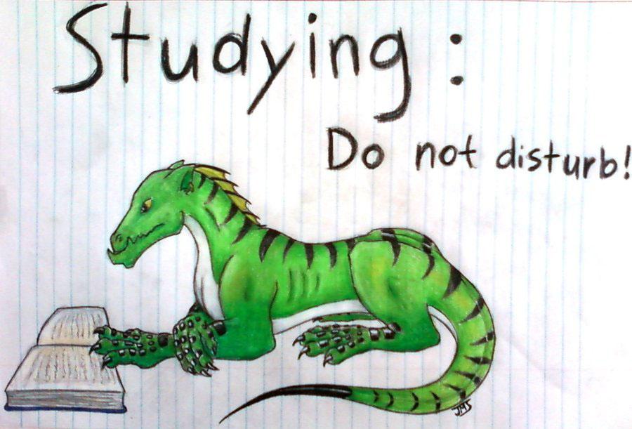 Why study Chinese?