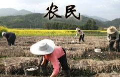 中国和西方的农民