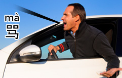 Swearing at a Driver