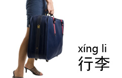Help with Luggage