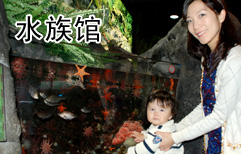 Visiting the Aquarium