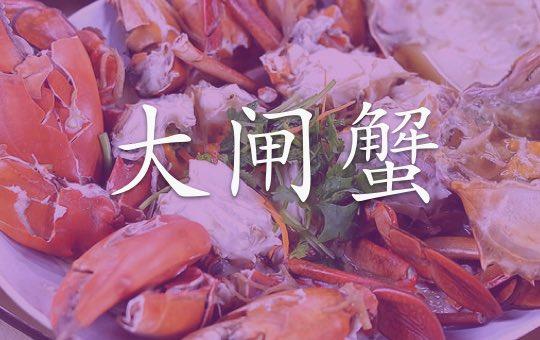 大闸蟹 Chinese Mitten Crab