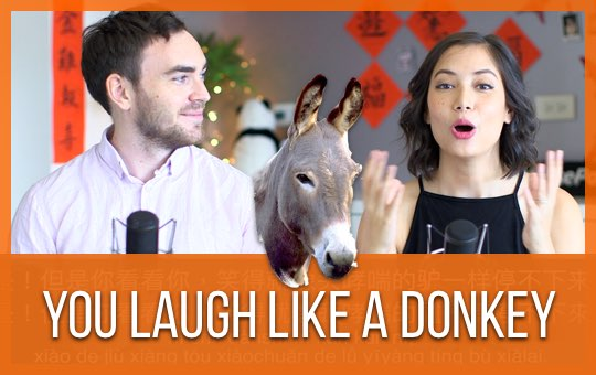 You Laugh Like a Donkey
