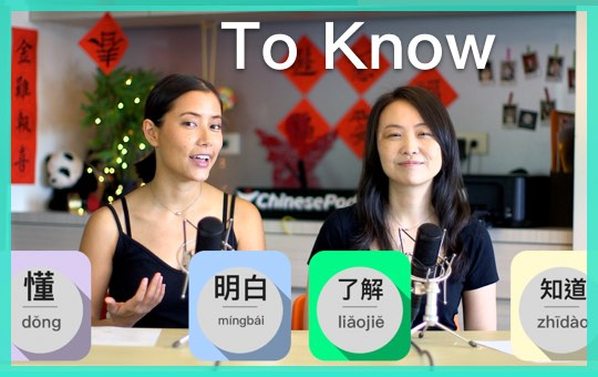 To Know: 懂,了解,明白,知道