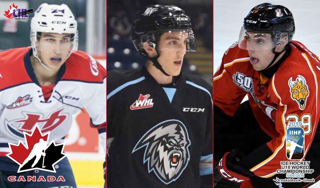 Team Canada Names 2019 Iihf U18 Leadership Group Chl