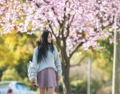 cherry_blossom_Melbourne_chloeting_02