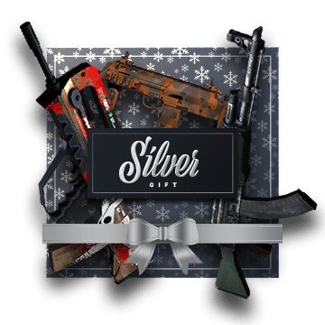 Win Silver Gift Bundle 2