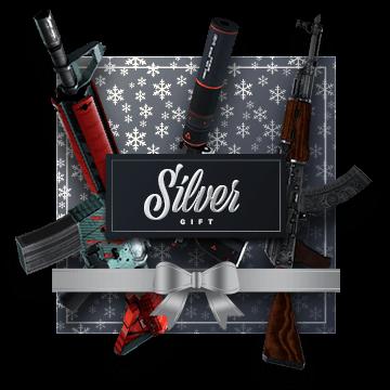 Silver Gift Bundle 1