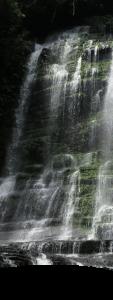 Explora aventiura bosques 8
