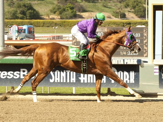 Run Like The Wind, California Chrome!!