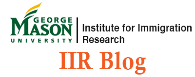 Iir blog logo rectangle