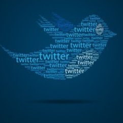 Immigration Reform, the Boston Marathon Bombings, and Twitter