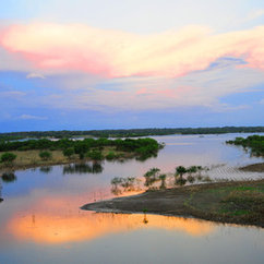 The Importance of the Amazon in the Modern World: July 7 - 21, 2015