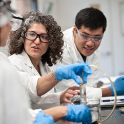 Immigrants in STEM Careers: An Analysis by Sex