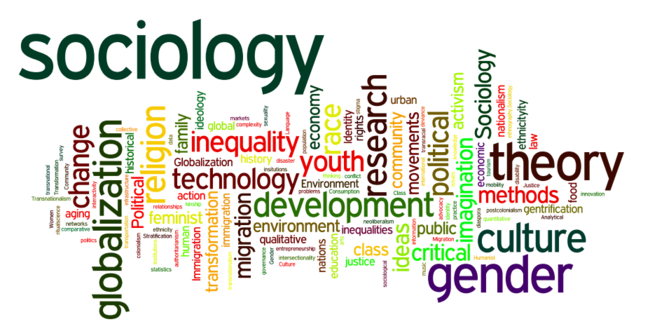 Sociology word cloud white