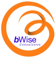 bWise Consultores