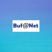 Bufanet Ingeniería y Servicios