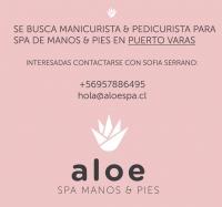 Comercial Aloe SPA