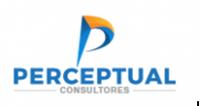 Perceptual Consultores Ltda.