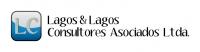 LAGOS CONSULTORES LTDA