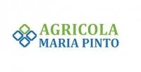 Sociedad Agricola El Ranchillo Uno Ltda